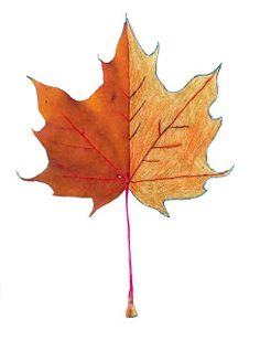 Art Projects for Kids: Finish the Leaf Template. Three different leaves available for FREE download.
