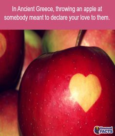 ﴾͡๏̯͡๏﴿ Its a Fact- no its not when you threw an apple to someone it was a marriage proposal