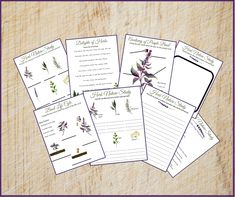 Looking for winter nature study options? Interested in a herb nature study? Grow herbs in your window sill and enjoy an herb nature study.