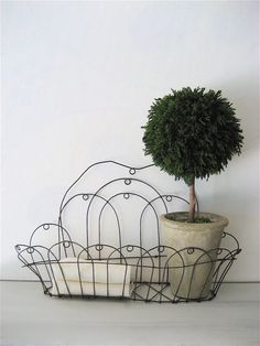 graceful wire planter... to collect and store all kinds of things but mostly a mini garden of plants