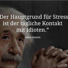 Einstein, Stress, Verse, Motto, Macs, Cartoons, Facebook, Cool Quotes, Funny Pics