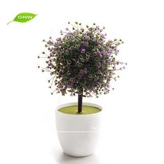 GNW GP014 Wholesale Artificial Grass Plastic Plants And Indoor Bonsai Plant  Decorative Indoor