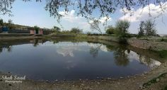 A beautiful water pond in Naushehra, the only town of Soon Valley #Pakistan