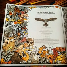 This is what I have coloured today. Kerby Rosanes, Animorphia.