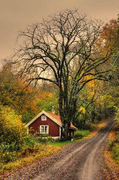 Autumn at the cottage (Sweden) by Klas Almqvist e