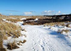 Terschelling in de winter met sneeuw bedekt.