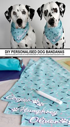 DIY Personalised Dog Party (or Anytime!) Bandanas - DIY Personalised Dog Party (or Anytime!) Bandanas DIY Personalised Dog Party (or Anytime! Diy Pet, Diy Dog Toys, Akita, Dog Storage, Diy Dog Collar, Dog Collars, Cat Dog, Pug Dogs, Dog Clothes Patterns