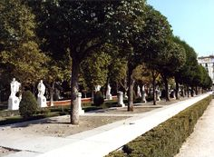 The Plaza de Oriente has cafés on one side, shady trees on the other.