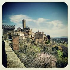 Pereta  #maremma #maremmans #tuscany #toscana #italy