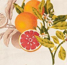 """Benson Mills Citrus Grove Set of 4 Spillproof Napkins 18"""" x 18"""" Fruit #BensonMills"""