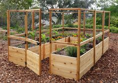 RaisedBeds.com - 8x12 Raised Cedar Garden Bed with Deer Fence, $2,499.00 (http://raisedbeds.com/8x12-raised-cedar-garden-bed-deer-fence/)