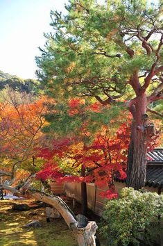 Kodaiji, Kyoto, Japan