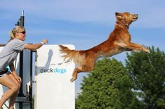 Dock Dogs: Are You In The Know