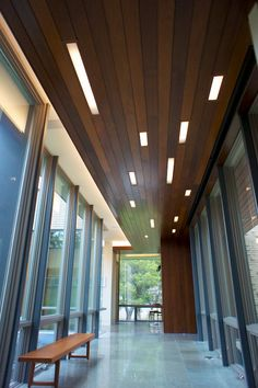 wood paneled ceiling + recessed rectilinear lights.