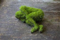 Mathilde Roussels Hanging Grass Sculptures