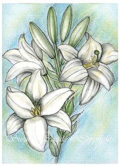 Arte pastelli disegni Fiori bianchi gigli edizione di Artessenza, €60.00