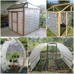 DIY Greenhouse Using Plastic Bottles