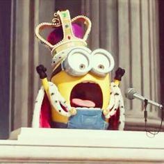 King Bob minions