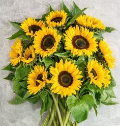 sonnenblume - Google-Suche Floral Wreath, Wreaths, Google, Plants, Decor, Sunflowers, Search, Flower Crowns, Door Wreaths