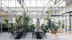 Glasshouses double as informal meeting spots inside this former warehouse in Amsterdam, which has been converted into offices for a pushchair company by Dutch studio Space Encounters.