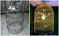 Bird cages are readily available. Garage sales, thrift shops, previous pets... have you thought of making them into a light? Some stores sel...