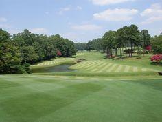 Golf Tips: Golf Clubs: Golf Gifts: Golf Swing Golf Ladies Golf Fashion Golf Rules & Etiquettes Golf Courses: Golf School: Electric Golf Cart, Golf Holidays, Woods Golf, Best Golf Courses, Golf Irons, Golf Lessons, Golf Accessories, Disc Golf, Ladies Golf