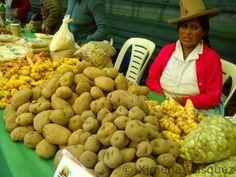 Ecoferia Frutos de la Tierra 2012 | Yo Compro En El Mercado de Productores Farmers Market, Potatoes, Vegetables, Food, Earth, Farmers Market Display, Potato, Veggies, Vegetable Recipes