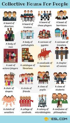 Collective Nouns For People in English - 7 E S L Groups of people! Learn extensive list of collective nouns for people to bolster your vocabulary in English with example sentences and ESL printable worksheets. English Teaching Materials, Teaching English Grammar, English Writing Skills, English Vocabulary Words, English Language Learning, Teaching Spanish, French Language, English Idioms, English Phrases