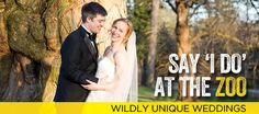 Looking for a truly unique wedding? The Maryland Zoo in Baltimore offers beautiful indoor and outdoor facilities for one exceptional wedding! Plus, the chance to mingle with animal guests to help make your day truly one of a kind.