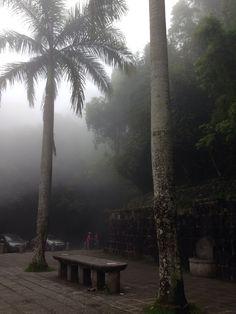 Mesa do Imperador, Tijuca Forest - Rio de Janeiro