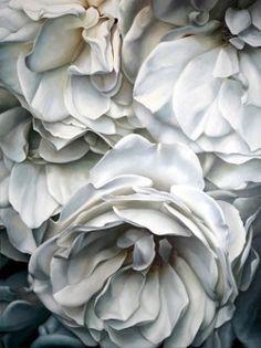 ❧ Couleur : Gris et blanc ❧