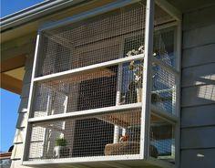 Cat Enclosures And Catios, Outdoor Cat Enclosures - Catio Spaces - Seattle, Wa