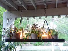Plant chandelier for the patio.