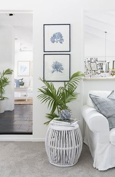 Coral prints in Denim blue in this Hamptons-style makeover of a dated brick home Hamptons Style Bedrooms, Hamptons Style Decor, The Hamptons, Hamptons Living Room, Style At Home, Hampton Furniture, Beach House Decor, Home Decor, House Inside