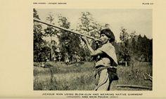 Fotografía de un Tolupán disparando su cervatana para cazar. Esta foto fue tomada por Víctor Wolfgang von Hagen, en 1943, lo que indica que el estudio y acercamiento a esta etnia hondureña, data de muchos años atrás. Esta foto se exhibe permanentemente en el Museo de los Indios de América, en Nueva York.