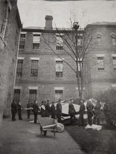 L'équipe d'un hopital psychiatrique attend qu'un patient veuille bien redescendre d'un arbre, Colney Hatch Asylum, Londres - 1895