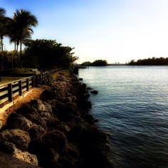 By the River. Dania Beach, Florida