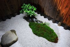 観智院 庭園 多様な枯山水と風情ある露地庭 Bonsai, Stepping Stones, Landscape, Japanese Gardens, Outdoor Decor, Gardening, Gardens, Plants, Garten