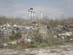 Delos, Greece... I've walked around on this very island. It's considered an archaeological site. It's simply remarkable as well as the history behind it.