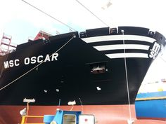 MSC_OSCAR_official_image