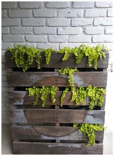 Old Pallets Ideas 43 Gorgeous DIY Pallet Garden Ideas to Upcycle Your Wooden Pallets - Need a cheap garden bed or planter that can be used either for vertical and horizontal gardening, but still looks good? Try these 43 pallet garden ideas. Old Pallets, Pallets Garden, Recycled Pallets, Wooden Pallets, Euro Pallets, Herb Planters, Planter Boxes, Pallet Planters, Planter Ideas
