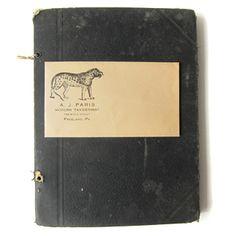 1930's Taxidermy Ephemera Collection