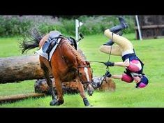 NEW Horse Falls Compilation 2018 - Best Bad Horse Riding Falls and ... Serious Injury, Horse Riding, Equestrian, Horses, Fall, Animals, Times, Sport, Autumn