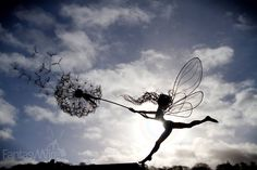 Inspired by an inexplicable real life encounter, these galvanised or stainless wire sculptures make the perfect statement piece for the bottom of any garden. Every fairy is a handmade sculpture uniquely crafted to your desired pose and installation requirements.  In 1920 two little girls photographed fairies at the bottom of their garden and created a news sensation. As we know, the photographs were fake, but the story captured the imagination of people who wanted to believe. A couple of…