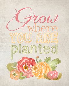 Grow where you are p