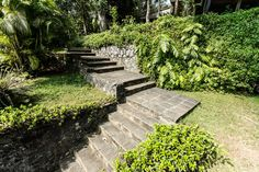 A lush walkway at The River House