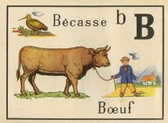 vintage french alphabet cards for nursery