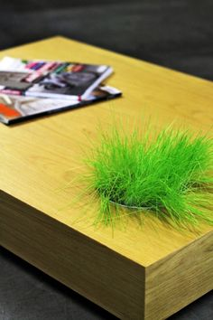 This is really cute.  A Perfect Combination: Grass Growing from a Wood Coffee Table     DesignRulz.com
