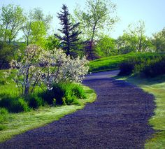 Pathway into Belmar Park ~ Lakewood, Colorado Lakewood Colorado, Colorado Usa, Colorado Homes, Joseph Oregon, Camping And Hiking, Camping Gear, Camping World, Take Me Home, Pathways