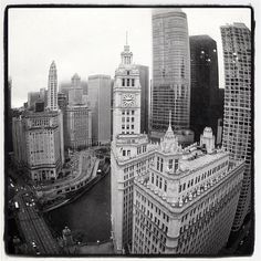 The Wrigley Building, seen as if a fish were at the 24th floor of the Tribune Tower during #openhousechicago